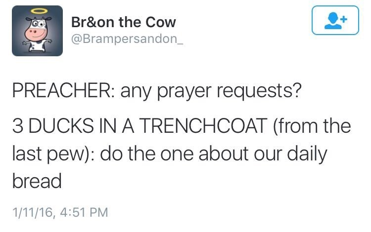 Text - + Br&on the Cow @Brampersandon_ PREACHER: any prayer requests? 3 DUCKS IN A TRENCHCOAT (from the last pew): do the one about our daily bread 1/11/16, 4:51 PM