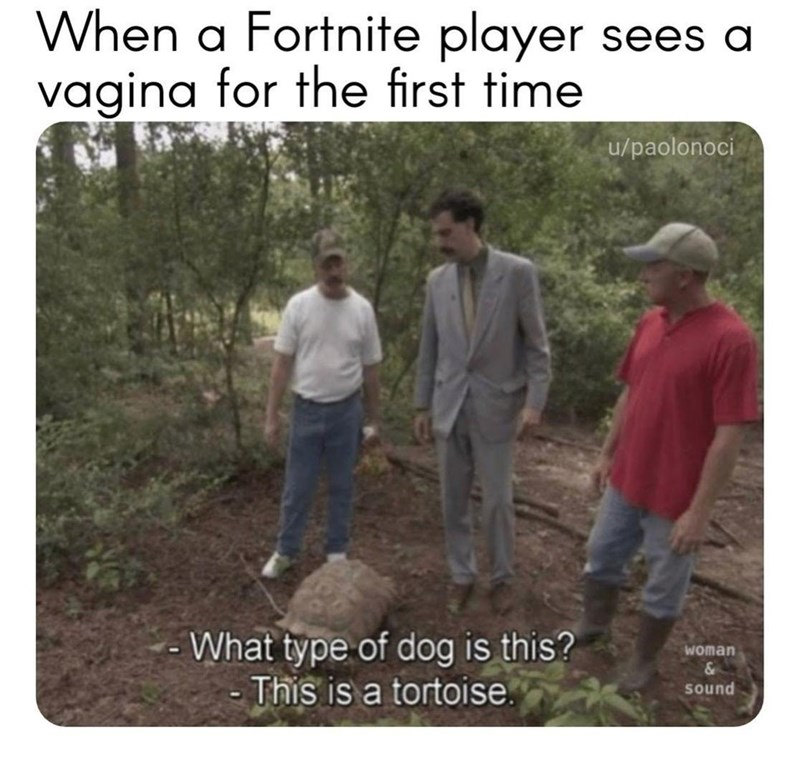 dank meme about a virgin seeing a naked female with scene of Borat not recognizing a turtle