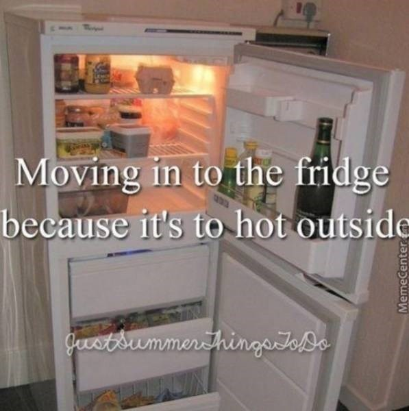 Refrigerator - Moving in to the fridge because it's to hot outside gevstsummerthingatoDe MemeCenter