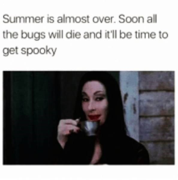 Text - Summer is almost over. Soon all the bugs will die and it'll be time to get spooky