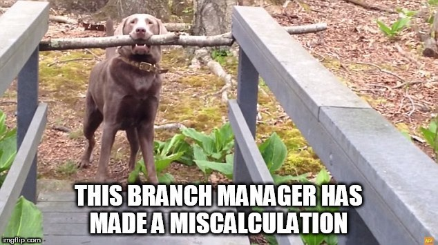 Dog - THIS BRANCH MANAGER HAS MADEA MISCALCULATION imgflip.com