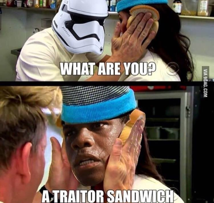 dank - Helmet - WHAT ARE YOU? ATRAITOR SANDWICH VIA 9GAG.COM