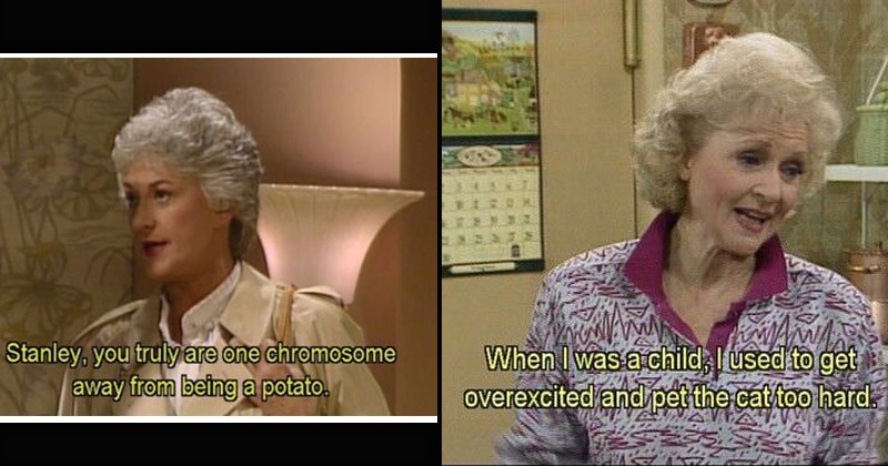 Funny memes and moments from 'The Golden Girls'