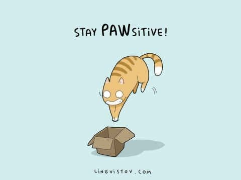 cat pun - Cartoon - STAY PAWSITIVE! ciNG VISTOV COM