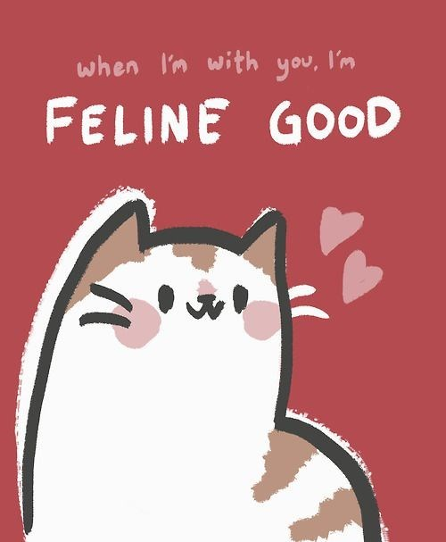 cat pun - Cartoon - when I'm with you, l'm FELINE GOOD