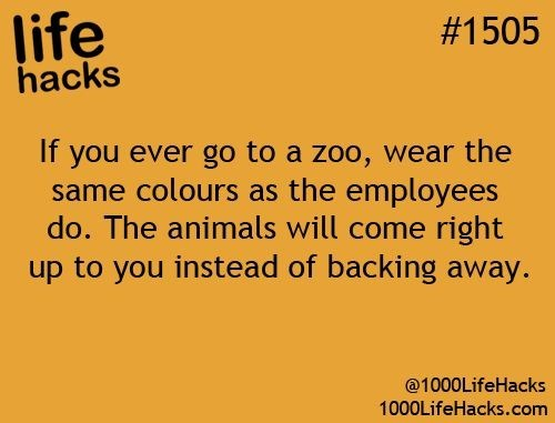 Text - life hacks #1505 If you ever go to a zoo, wear the same colours as the employees do. The animals will come right up to you instead of backing away. @1000LifeHacks 1000LifeHacks.com