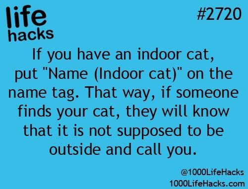 """Text - life hacks If you have an indoor cat, put """"Name (Indoor cat)"""" on the name tag. That way, if someone finds your cat, they will know that it is not supposed to be outside and call you. #2720 @1000LifeHacks 1000LifeHacks.com"""