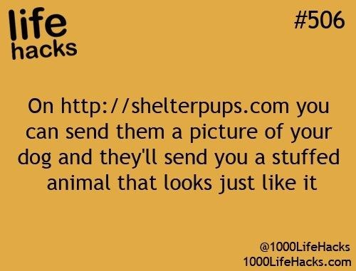Text - life hacks #506 On http://shelterpups.com you can send them a picture of your dog and they'll send you a stuffed animal that looks just like it @1000LifeHacks 1000LifeHacks.com