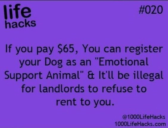 """Text - life hacks #020 If you pay $65, You can register your Dog as an """"Emotional Support Animal"""" & It'll be illegal for landlords to refuse to rent to you. @1000LifeHacks 1000LifeHacks.com"""