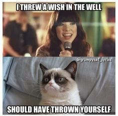 """caturday meme with grumpy cat telling Carly Rae Jepsen to throw herself in a well from """"Call Me Maybe"""""""