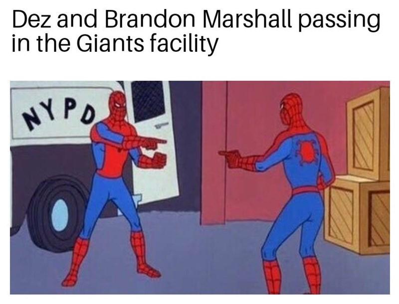 Cartoon - Dez and Brandon Marshall passing in the Giants facility NYPO