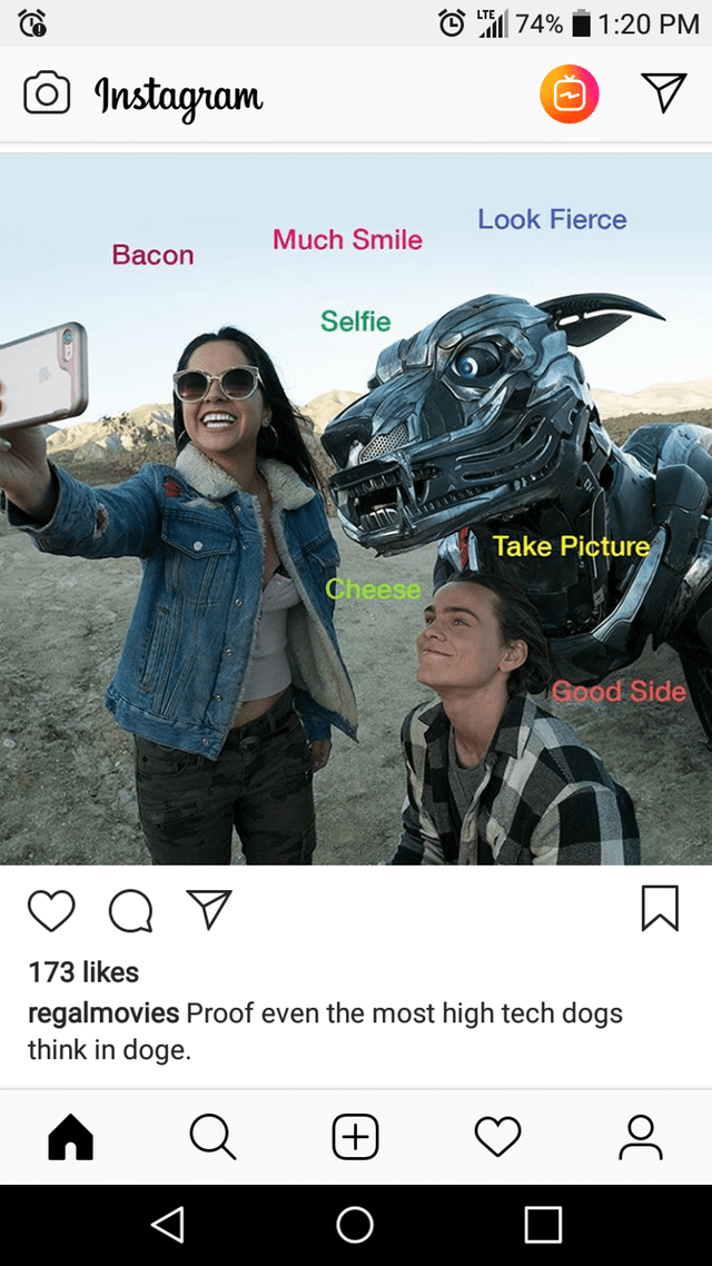 Helmet - 1:20 PM 74% Instagram O Look Fierce Much Smile Bacon Selfie Take Picture Cheese Good Side 173 likes regalmovies Proof even the most high tech dogs think in doge. K