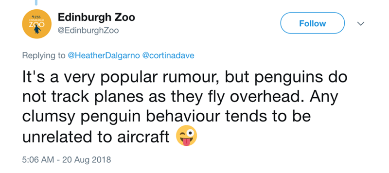 Text - Edinburgh Zoo @EdinburghZoo RZSS Follow Replying to @HeatherDalgarno @cortinadave It's a very popular rumour, but penguins do not track planes as they fly overhead. Any clumsy penguin behaviour tends to be unrelated to aircraft 5:06 AM 20 Aug 2018