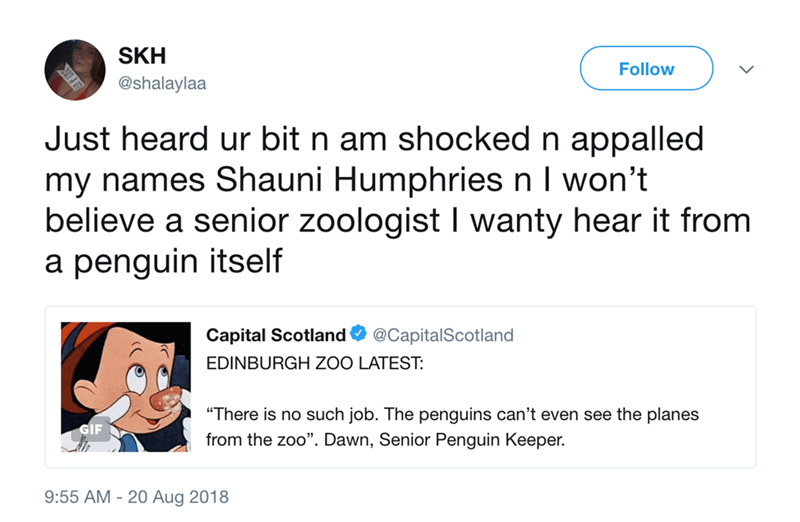 "Text - SKH Follow @shalaylaa Just heard ur bit n am shocked n appalled my names Shauni HumphriesnI won't believe a senior zoologist I wanty hear it from a penguin itself Capital Scotland @CapitalScotland EDINBURGH ZOO LATEST: ""There is no such job. The penguins can't even see the planes from the zoo"". Dawn, Senior Penguin Keeper 9:55 AM 20 Aug 2018"