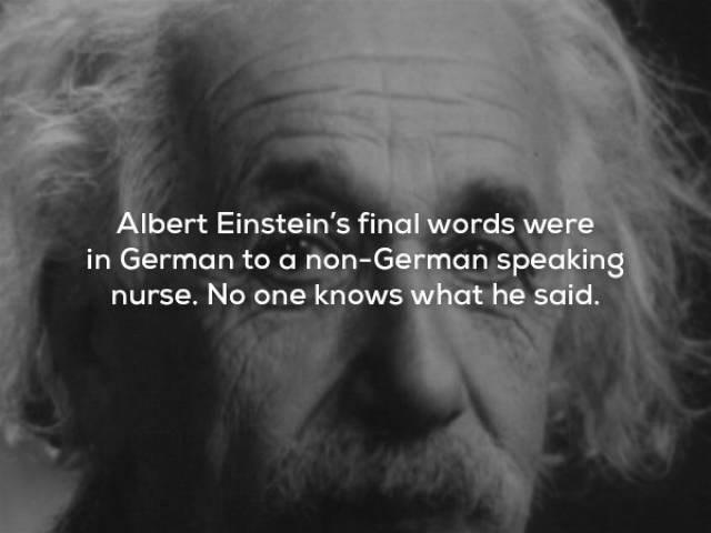 Face - Albert Einstein's final words were in German to a non-German speaking nurse. No one knows what he said.