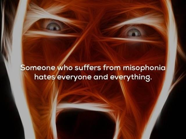 Human - Someone who suffers from misophonia hates everyone and everything.