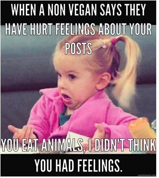 Photo caption - WHEN A NON VEGAN SAYS THEY HAVE HURT FEELINGS ABOUT YOUR POSTS YOU EAT ANIMALS, 1DIDNT THINK YOU HAD FEELINGS quickmeme.com