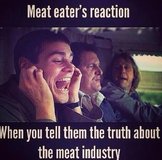 Facial expression - Meat eater's reaction When you tell them the truth about the meat industry