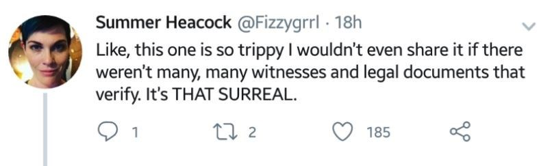"""Tweet that reads, """"Like, this one is so trippy I wouldn't even share it if there weren't many, many witnesses and legal documents that verify. It's that surreal"""""""