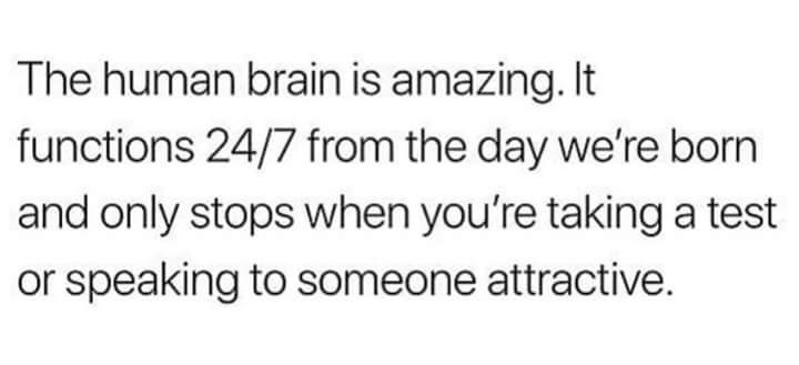Text - The human brain is amazing. It functions 24/7 from the day we're born and only stops when you're takinga test or speaking to someone attractive.