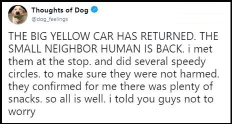 "Tweet that reads, ""THE BIG YELLOW CAR HAS RETURNED. THE SMALL NEIGHBOR HUMAN IS BACK. I met them at the stop and did several speedy circles to make sure they were not harmed. They confirmed for me there was plenty of snacks so all is well. I told you guys not to worry"""
