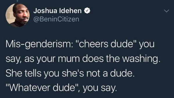 """Text - Joshua Idehen @BeninCitizen Mis-genderism: """"chee rs dude"""" you say, as your mum does the washing She tells you she's not a dude. """"Whatever dude"""", you say."""