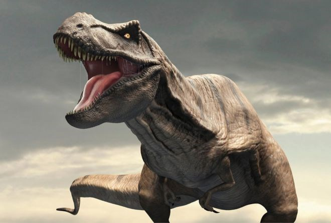 scientists discover that t-rex had an internal air conditioner built into it's head