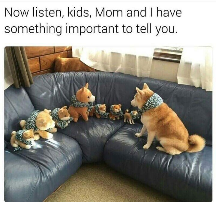 Couch - Now listen, kids, Mom and I have something important to tell you. M
