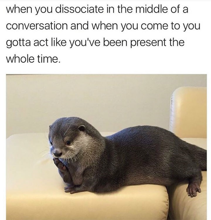 Mammal - when you dissociate in the middle of a conversation and when you come to you gotta act like you've been present the whole time.