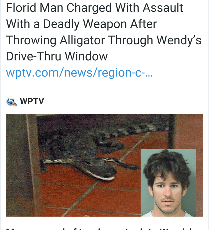 florida man charged with assault with a deadly weapon after throwing alligator through Wendy's Drive-Trhu window