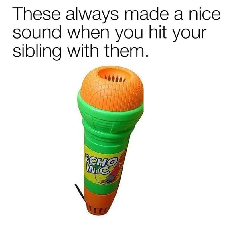 Microphone - These always made a nice sound when you hit your sibling with them. CHO C