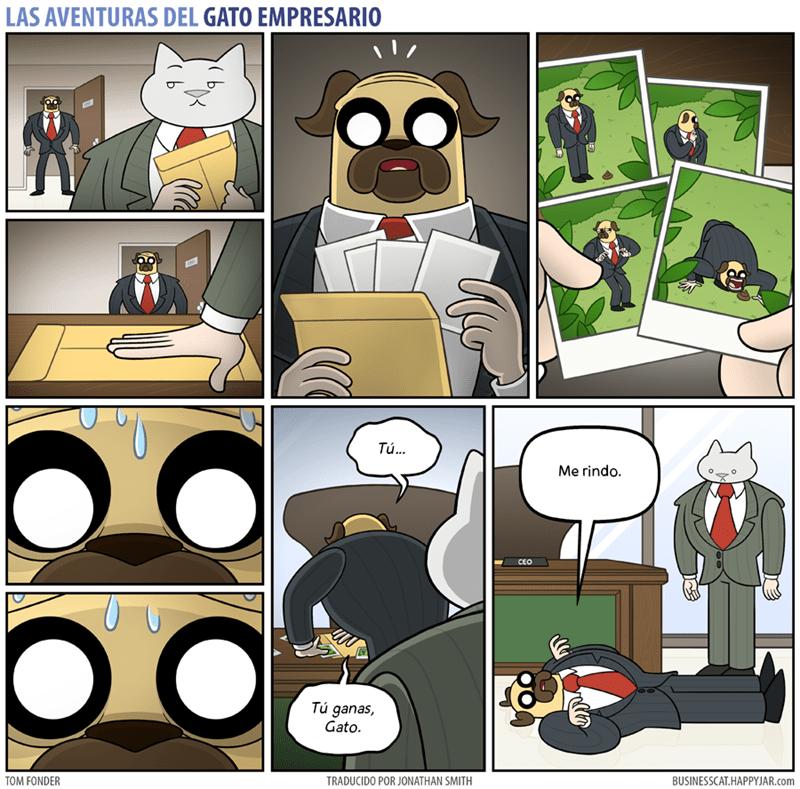 gato empresario sobornando a un perro