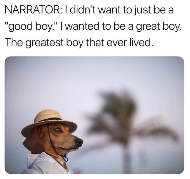 """Meme of a dachshund in a hat under the caption, """"Narrator: I didn't want to just be a 'good boy.' I wanted to be a great boy. The greatest boy that ever lived"""""""