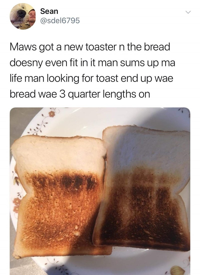 Food - Sean @sdel6795 Maws got a new toaster n the bread doesny even fit in it man sums up ma life man looking for toast end up wae bread wae 3 quarter lengths on