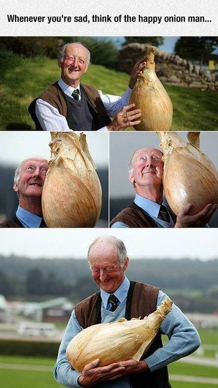 Vegetable - Whenever you're sad, think of the happy onion man...