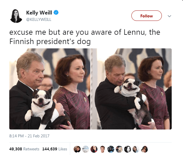 Facial expression - Kelly Weill Follow @KELLYWEILL excuse me but are you aware of Lennu, the Finnish president's dog 8:14 PM - 21 Feb 2017 49,308 Retweets 144,639 Likes