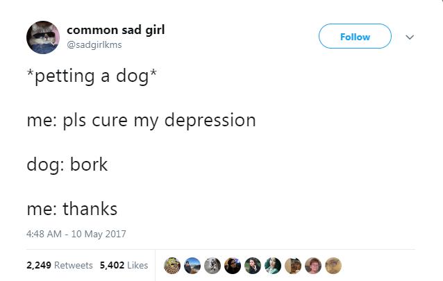 Text - common sad girl Follow @sadgirlkms petting a dog* me: pls cure my depression dog: bork me: thanks 4:48 AM - 10 May 2017 2,249 Retweets 5,402 Likes