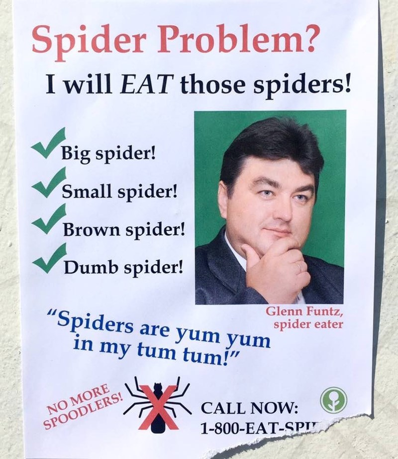 Advertisement by a guy claiming he'll eat any spiders in your home