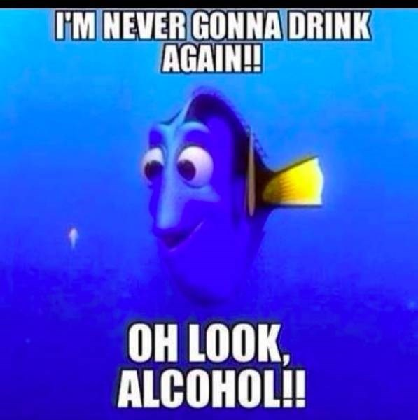 meme about forgetting you promised to never drink again with pic of Dory from Finding Nemo