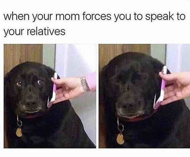 "Pic of a dog looking sad while someone holds a phone up to its ear under the caption, ""When your mom forces you to speak to your relatives"""