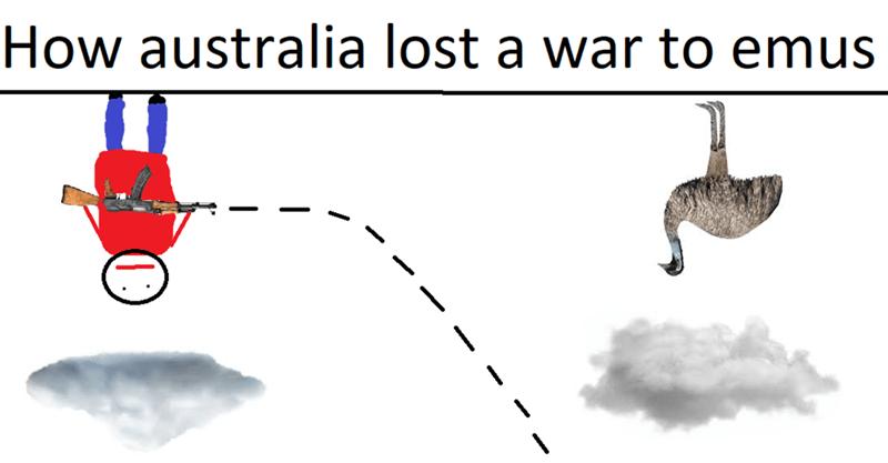 dank meme - Line - How australia lost a war to emus