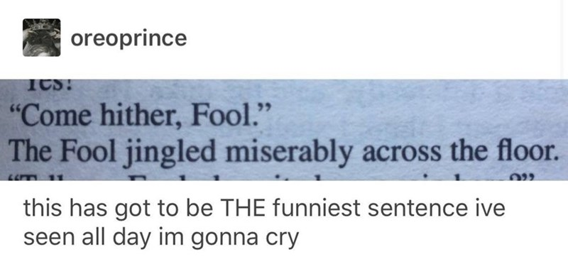 "Someone posted a screen cap of some text that reads, ""'Come hither, Fool.' The Fool jingled miserably across the floor"" and then commented below, ""This has got to be the funniest sentence I've seen all day, I'm gonna cry"""