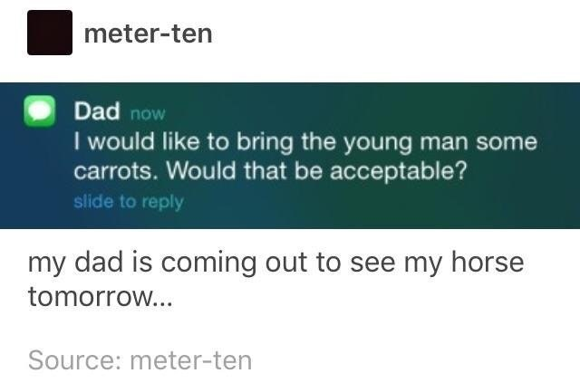 Text - meter-ten Dad now I would like to bring the young man some carrots. Would that be acceptable? slide to reply my dad is coming out to see my horse tomorrow... Source: meter-ten