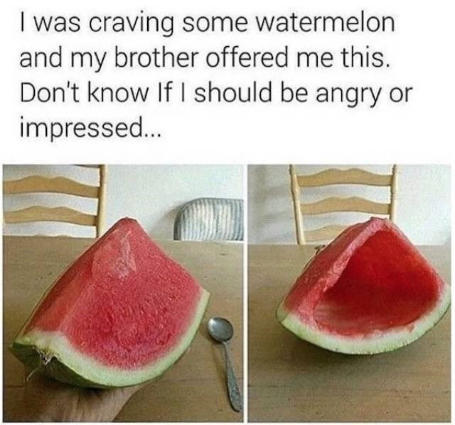 meme - Watermelon - I was craving some watermelon and my brother offered me this. Don't know If I should be angry or impressed...