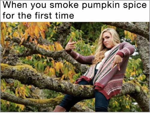pumpkin spice meme - Tree - When you smoke pumpkin spice for the first time