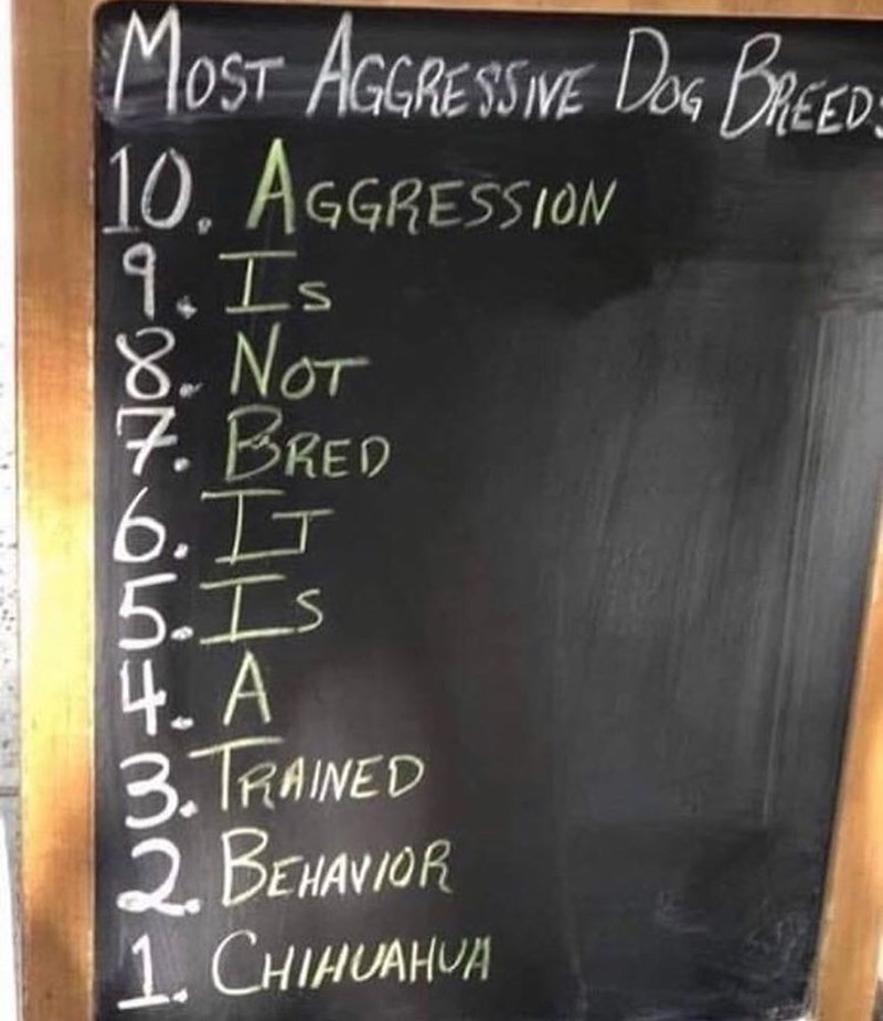 Funny sign about aggression in dogs, chihuahuas are the most aggressive dogs.