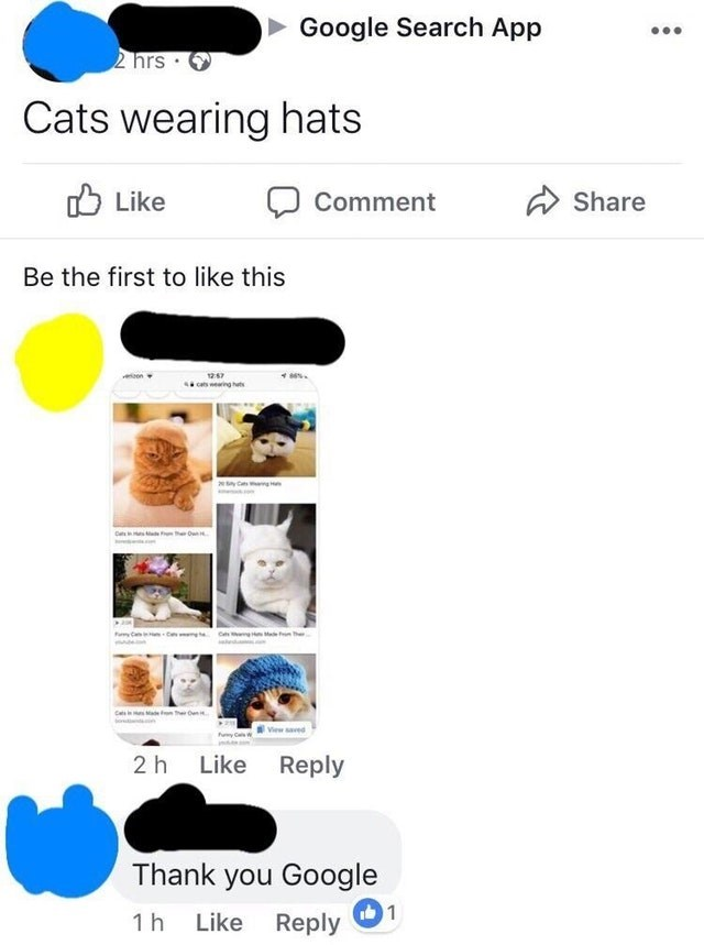 Product - Google Search App 2 hrs Cats wearing hats Like Share Comment Be the first to like this tOn View saved 2h Like Reply Thank you Google 1 Reply 1h Like