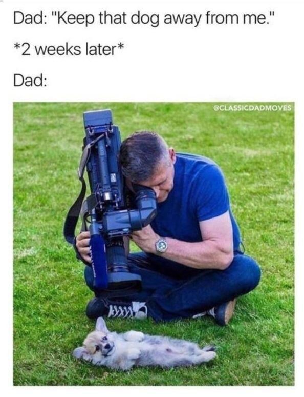 wholesome Meme about a dad who didn't want to get a puppy but now he's bonding with the puppy