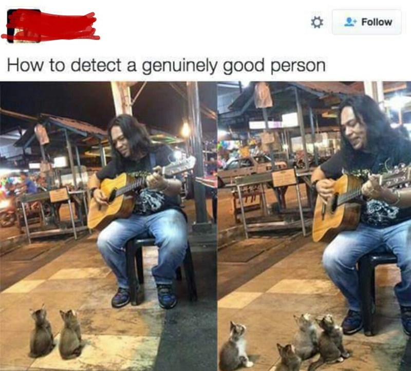 wholesome meme of a man playing guitar for kittens