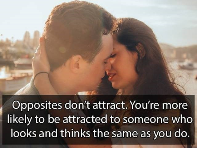 Love - Opposites don't attract. You're more likely to be attracted to someone who looks and thinks the same as you do.